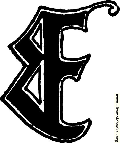 "[Picture: Calligraphic letter ""E"" in 15th century gothic style]"