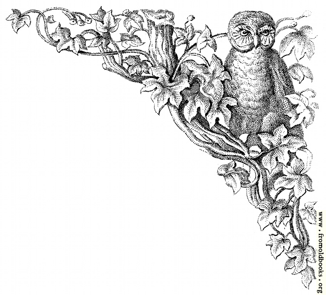 [Picture: Corner decoration: Owl with leaves and tree]