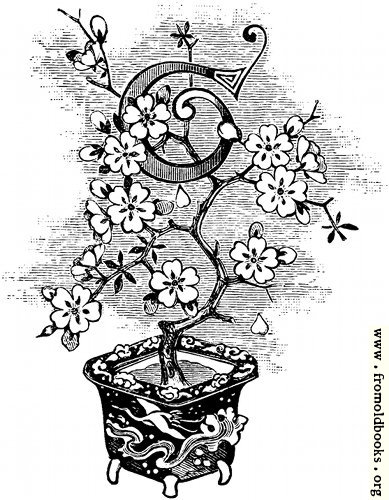 """[Picture: Initial letter """"t"""" as flower in a pot]"""