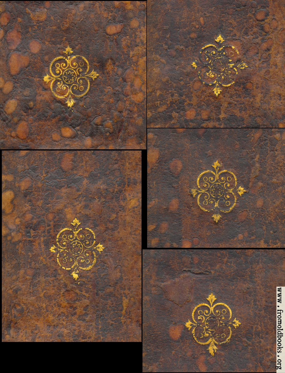 Book Cover Decoration ~ Hoy court leather bound spine gold decorations