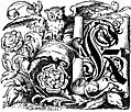 Decorative initial K on scroll with owl and roses