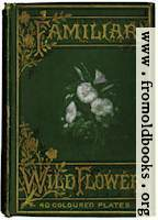 Front Cover in Green