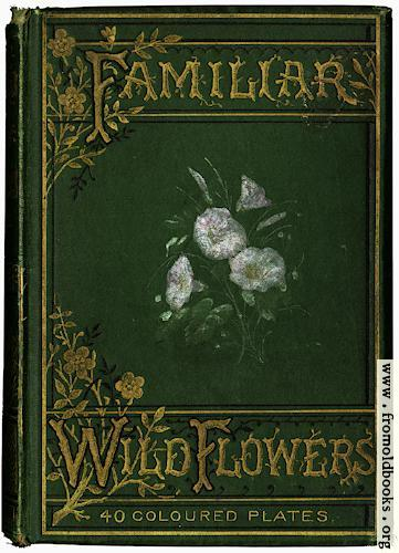 [Picture: Front Cover in Green]