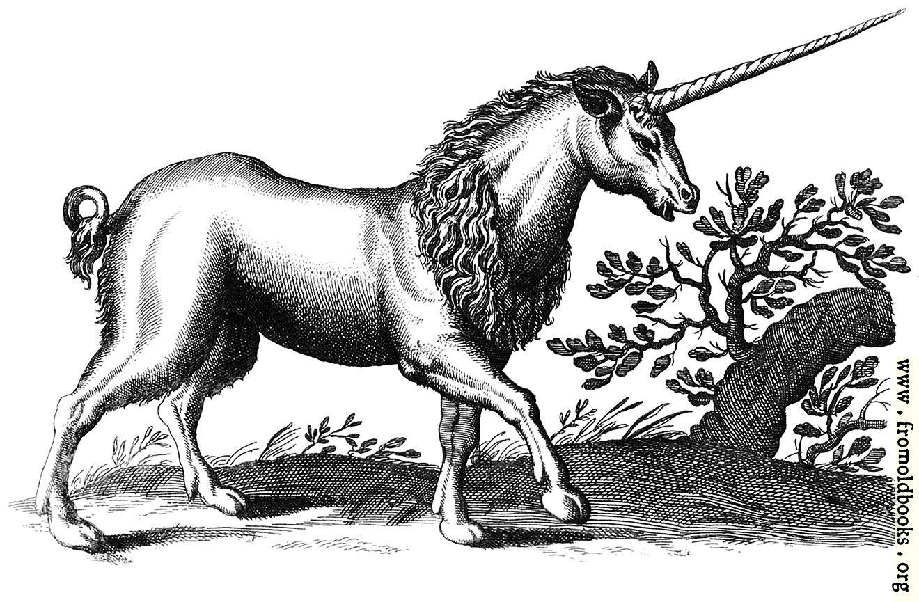 http://www.fromoldbooks.org/Jonstonus-FourFootedBeasts/pages/0153-c-unicorn-engraving/0153-c-unicorn-engraving-q85-1320x865.jpg