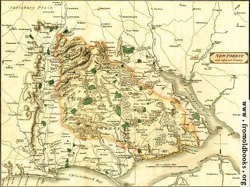 [Picture: Map of the New Forest and Adjacent Country]