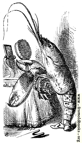 [Picture: Lobster primping before a mirror]