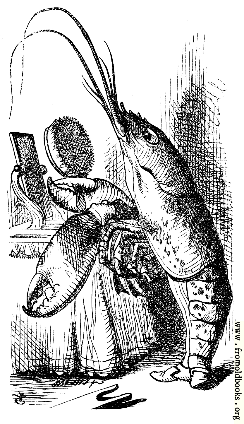 Lobster Primping Before A Mirror