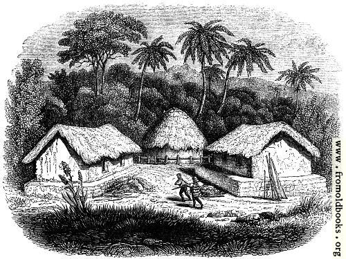 [Picture: 49.---Huts in a Cingalese Village.]