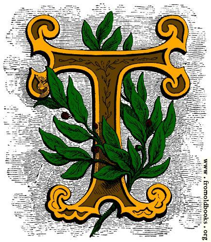 Floriated initial letter T, coloured version
