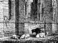 [picture: 1023.---Howden Church (detail for use as computer desktop background image)]