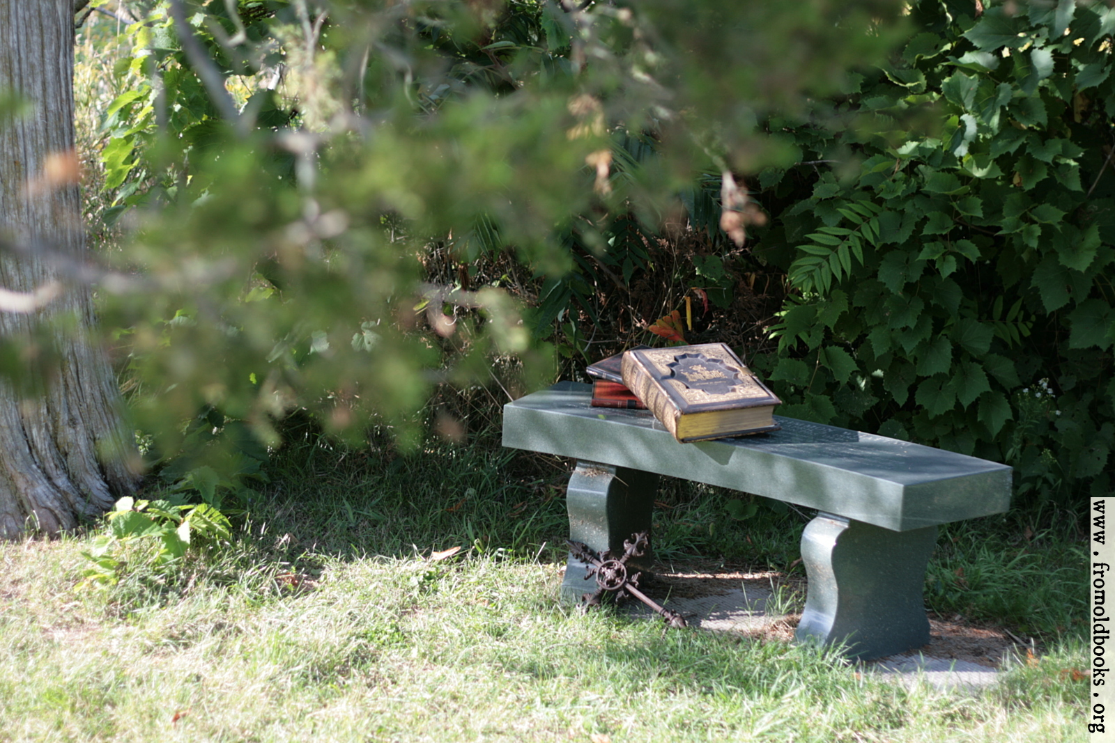 Stone Bench Under A Tree With Bible Books And Cross