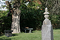 [picture: Tombstone with benches under tree]