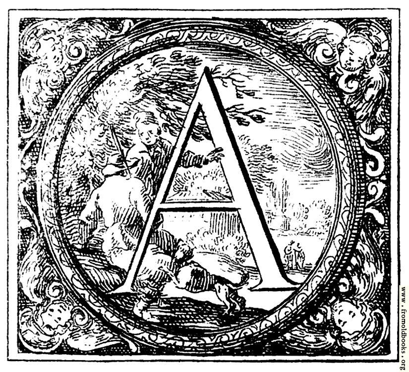 A Alphabet Letter Decorated (Hist...