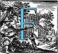 Historiated decorative initial capital letter F in Blue