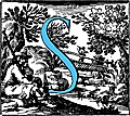 Historiated decorative initial capital letter S in Blue