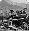 [picture: Darjeeling Railway 2]