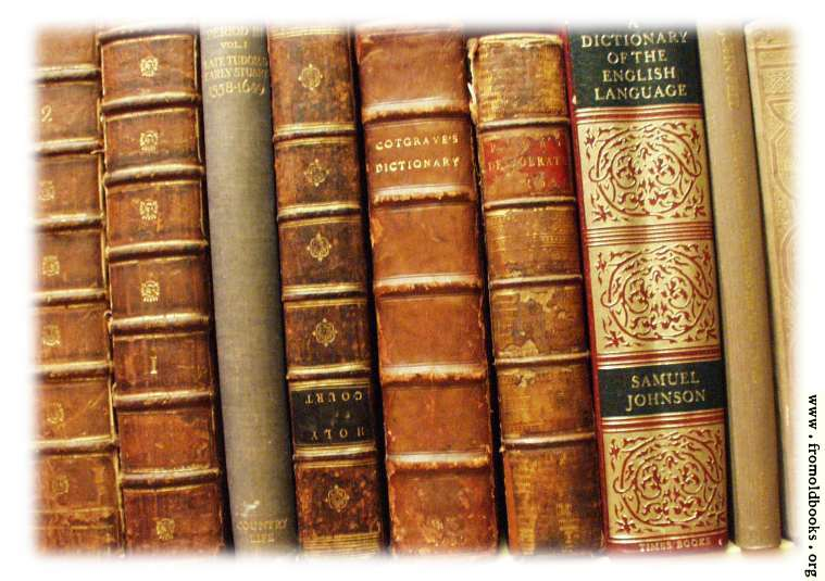 [Picture: Spines and Bindings of old books]