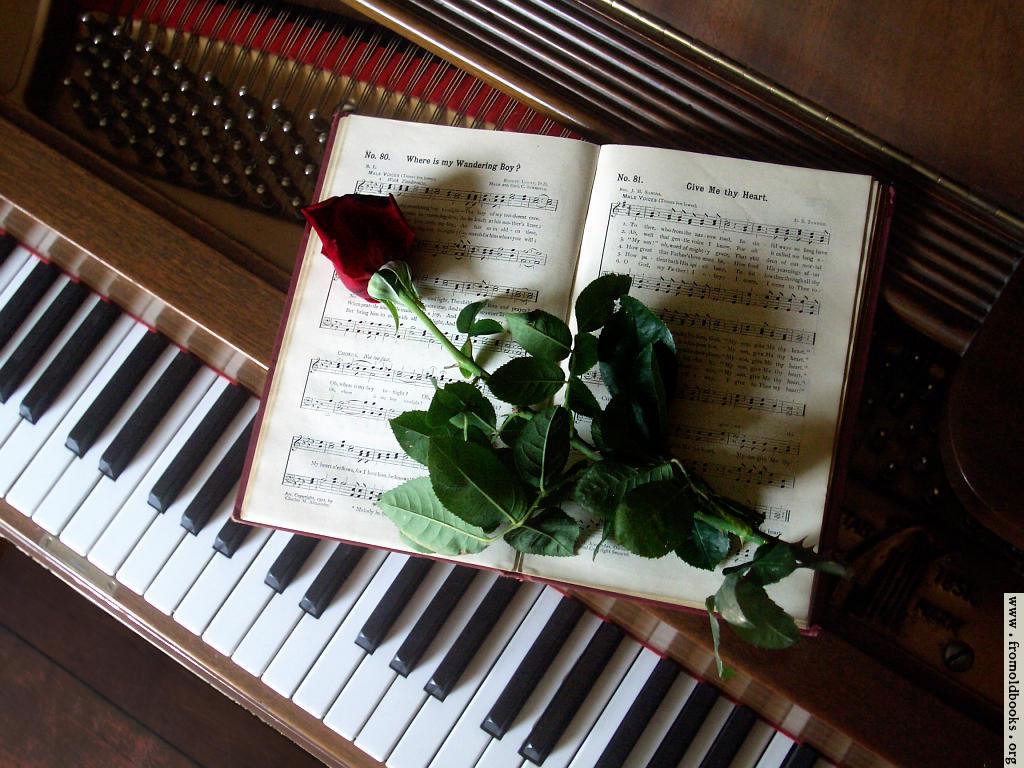 バラの音色を奏でるピアノ。
