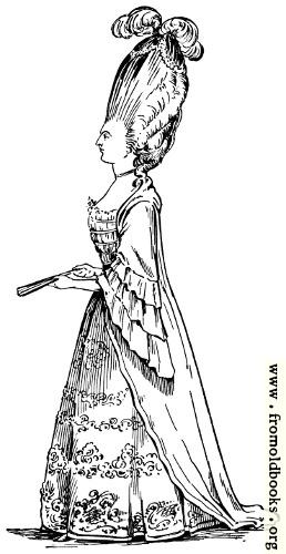 [Picture: Female Macaroni.]