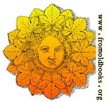 [Picture: Bacchus with sun-face]