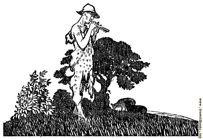 [Picture: Shepherd Boy]