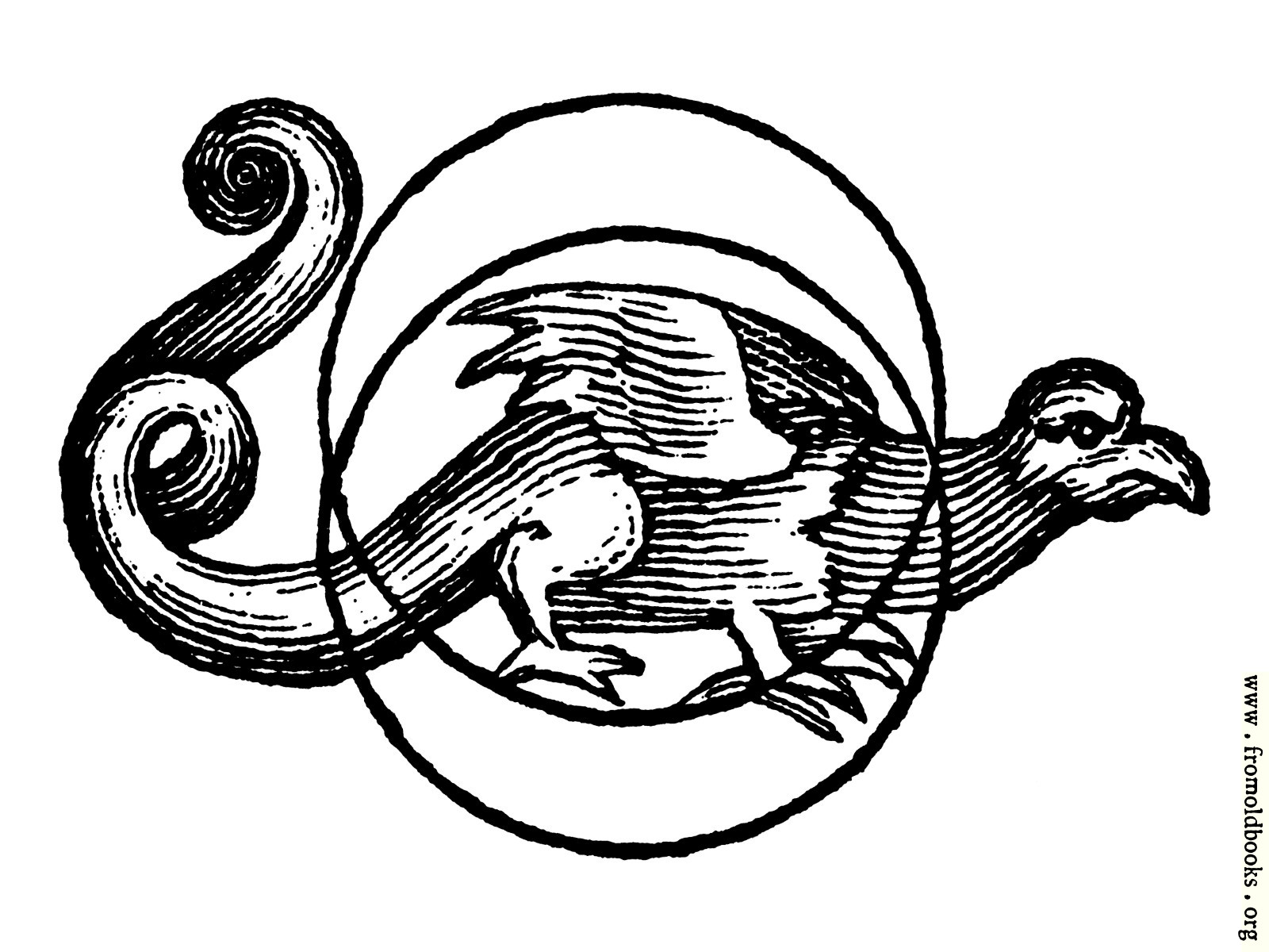 [Picture: Dragon Talisman]