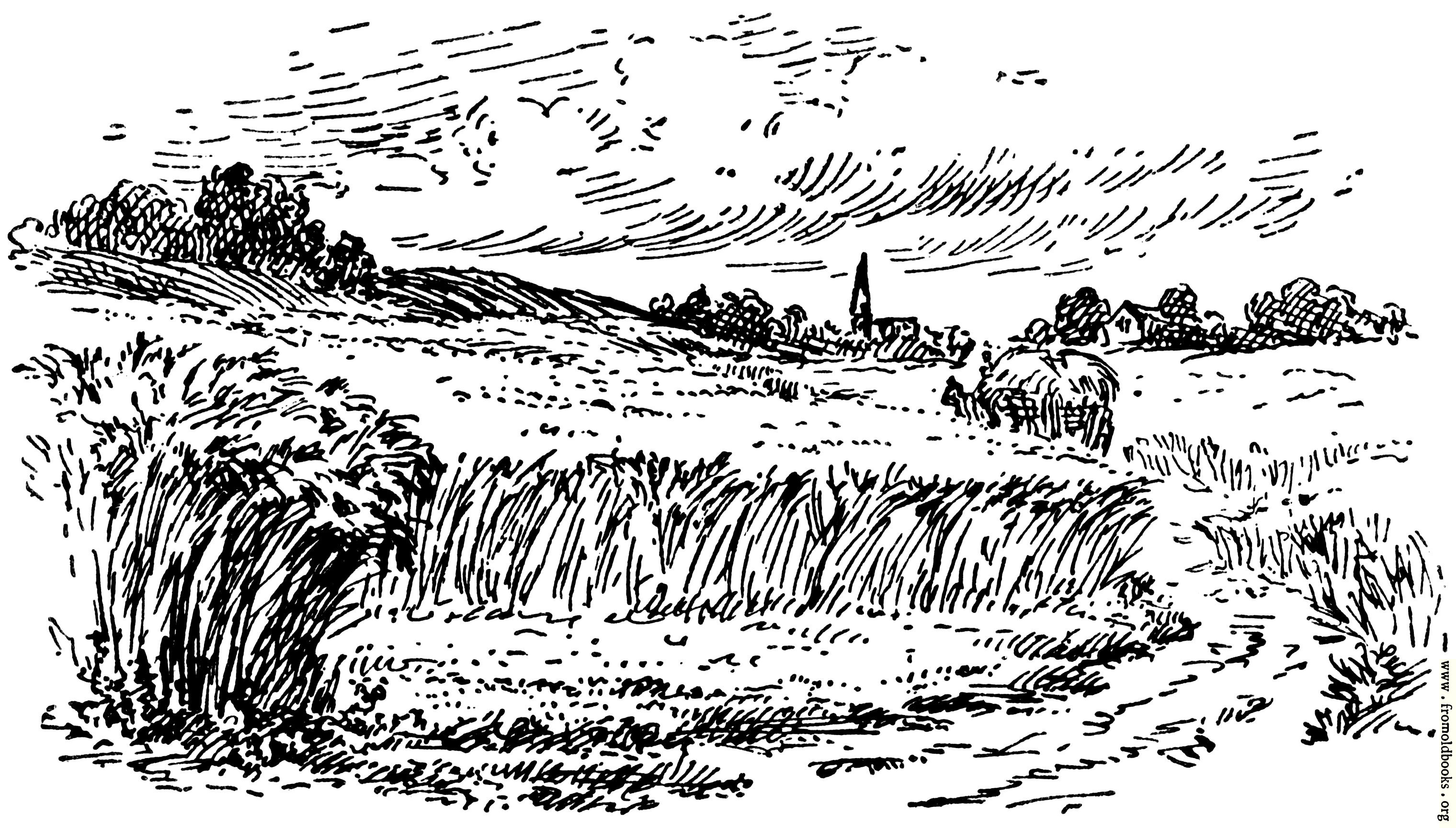 [Picture: The field, from p. 69]