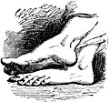 [picture: Bare Feet of God, from p. 69]