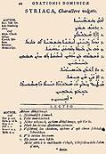[Picture: 12: Syriaca, Charactere vulgato]