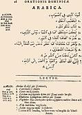 [picture: 16: Arabica]