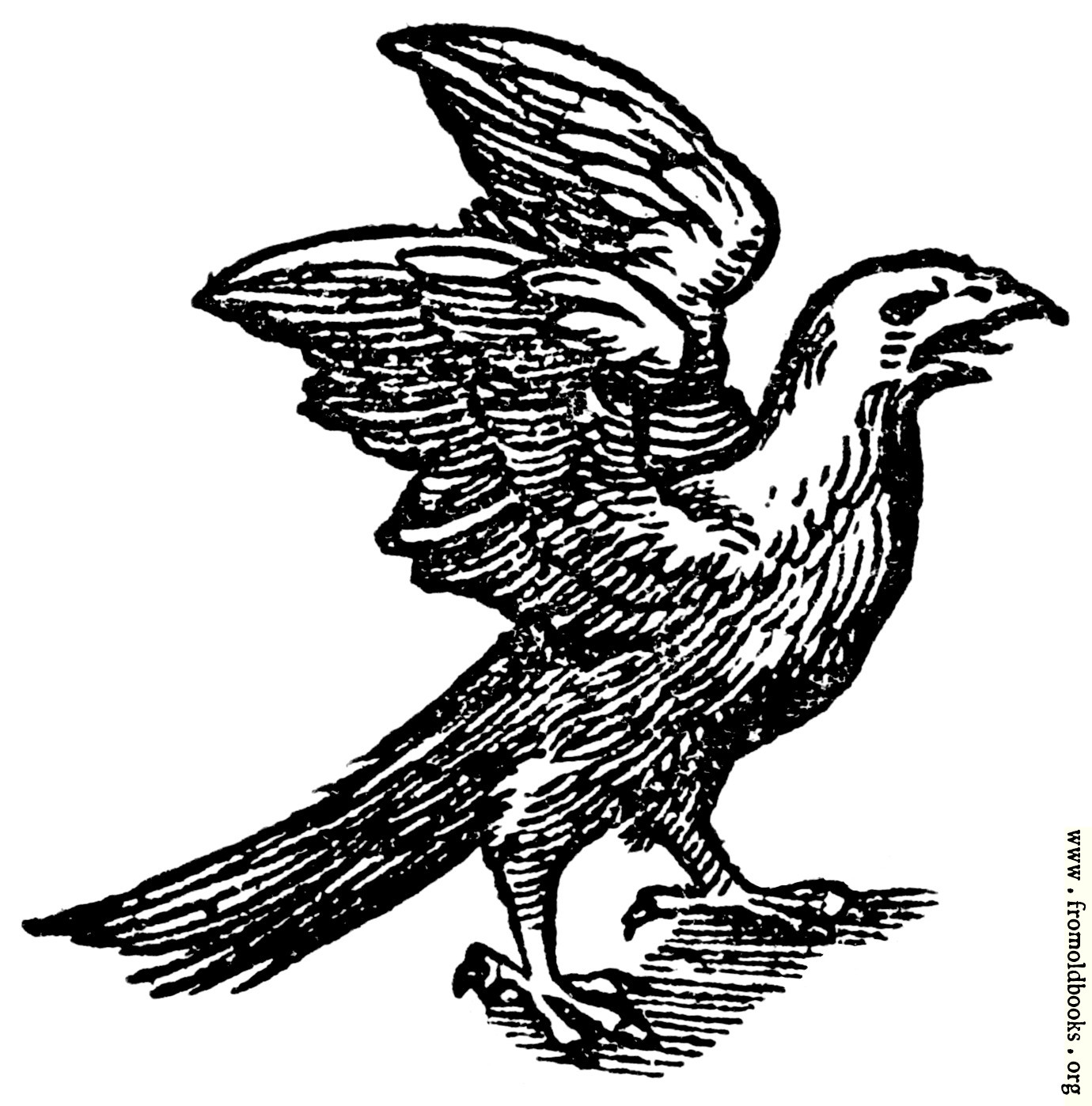 [Picture: 68b.—Printer's Mark Detail: feathered eagle]