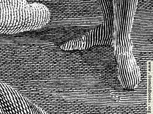 [Picture: Engraving detail: stripy feet]