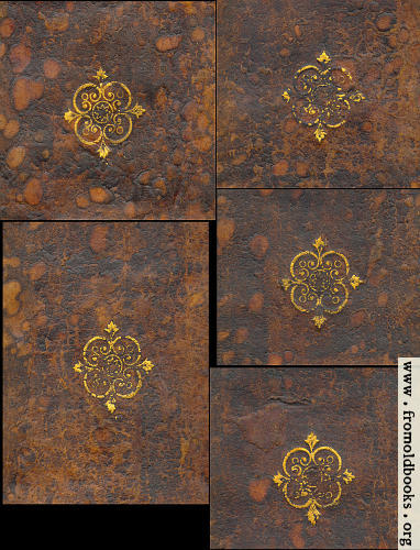 [Picture: Hoy Court leather-bound spine gold decorations]