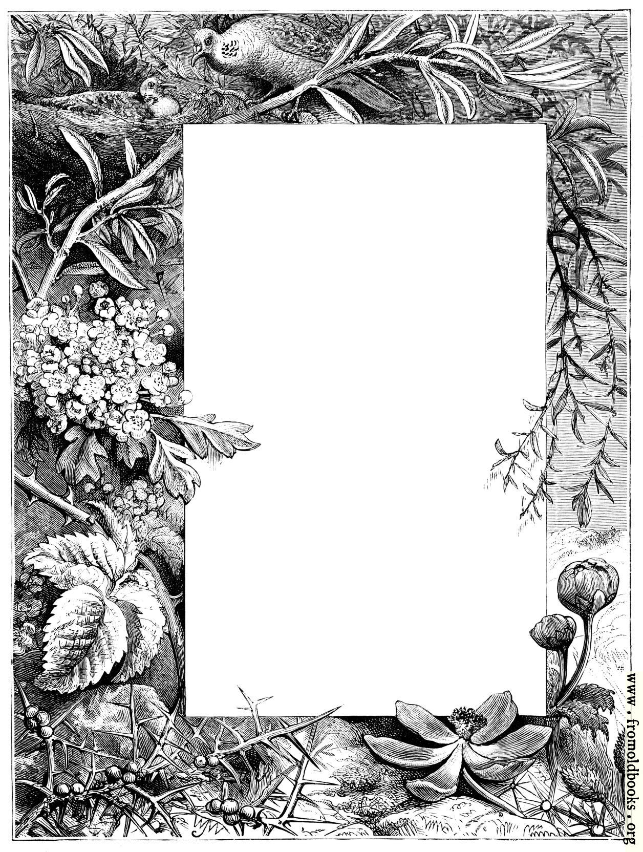 [Picture: Irregular border of flowers, birds and nature]