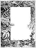 Irregular border of flowers, birds and nature