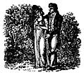 [Picture: 168.—Lovers in the bushes.]