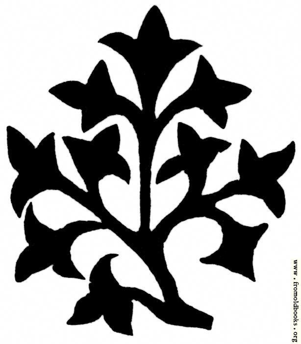 [Picture: 53.12.—Small Bush]