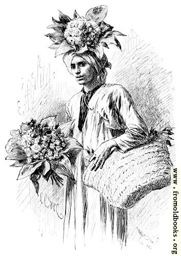 [Picture: Gardener's Boy]