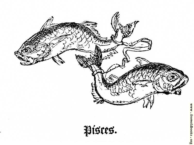 [Picture: Pisces]