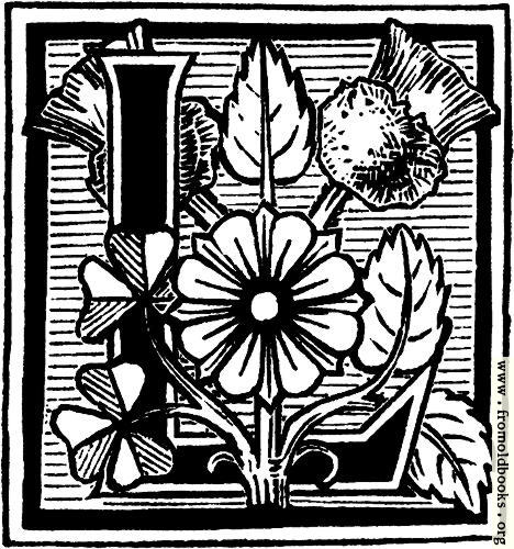 """[Picture: Decorative initial """"L"""" with wild flowers and weeds]"""