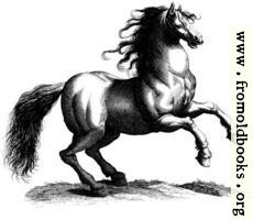 [Picture: 135a.—Antique engraving of a horse]