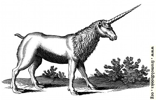 [Picture: Unicorn with Mane (Monoceros seu Unicornu Jubatus)]