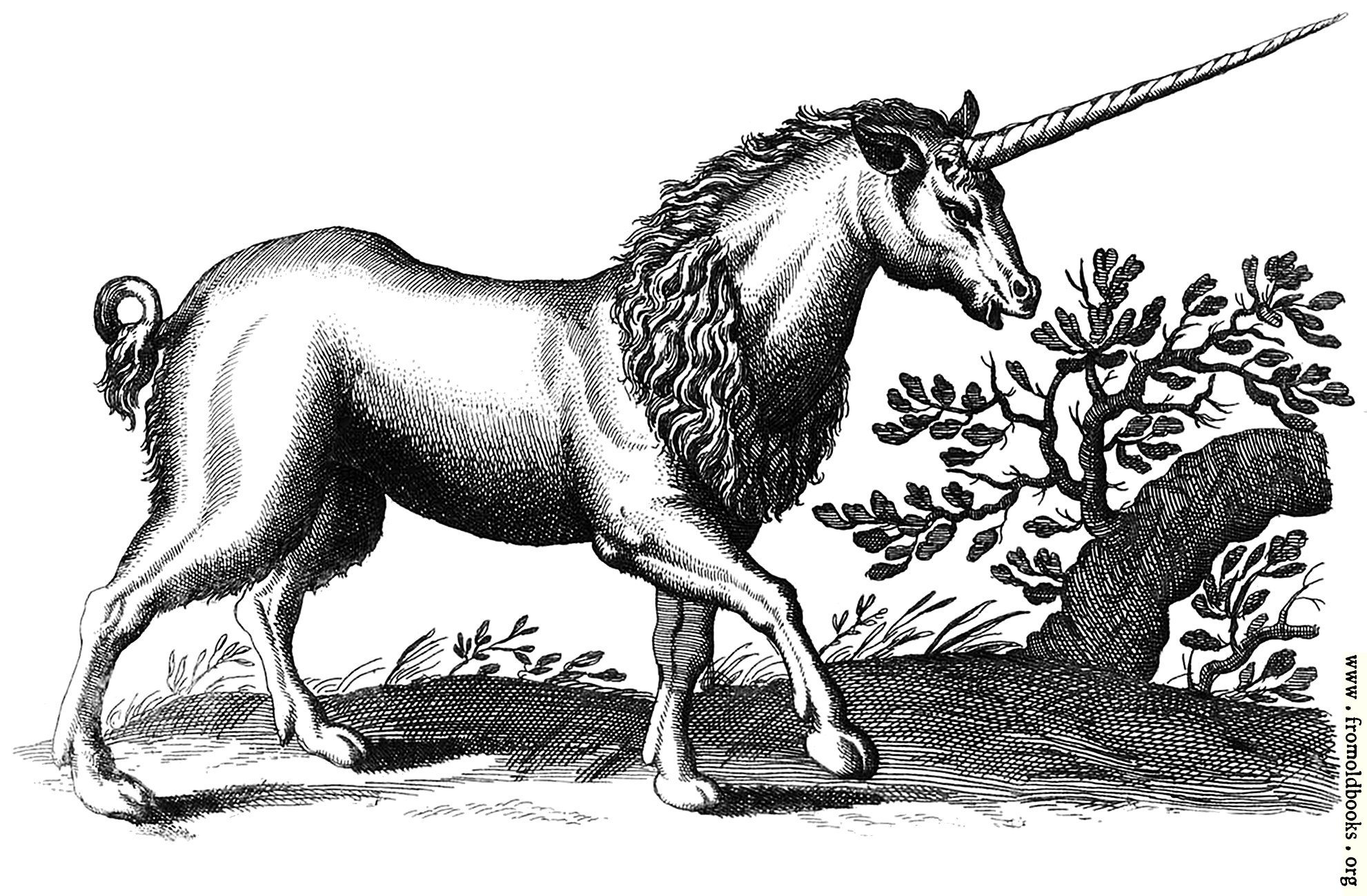 [Picture: Unicorn with Mane (another one)]