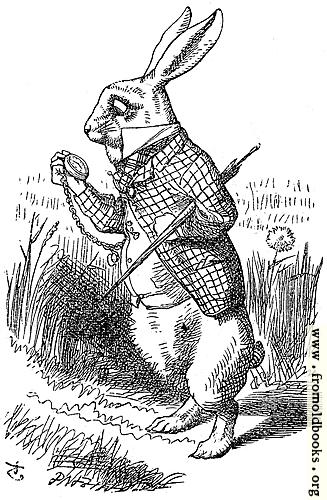 [Picture: The White Rabbit]