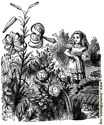 [Picture: Alice in the Garden of Live Flowers]