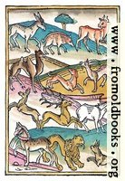 [picture: Page 113. Four Footed Beasts.]