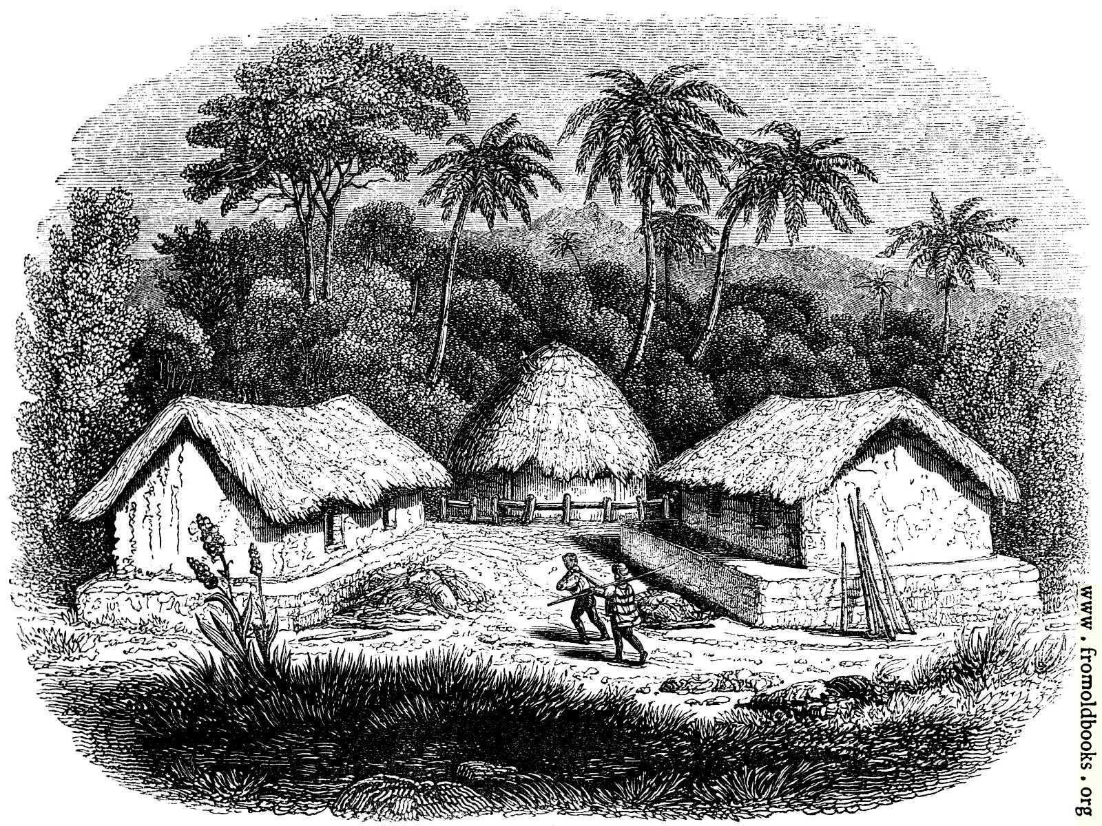 Line Art Village : —huts in a cingalese village