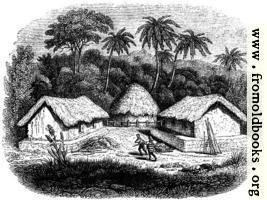 [Picture: 49.—Huts in a Cingalese Village.]