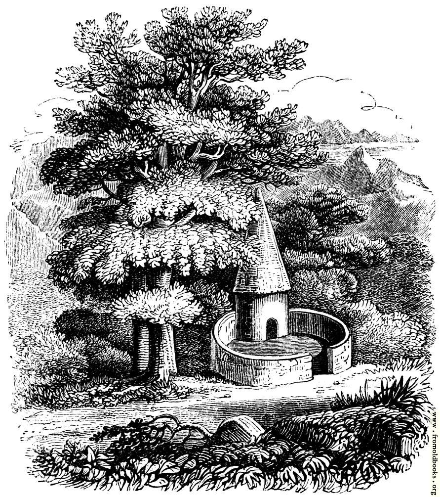 [Picture: 55.—Welsh Pigsty.]