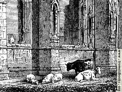 [Picture: 1023.—Howden Church (detail for use as computer desktop background image)]